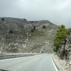 The stark scenery driving to Ronda... be on the lookout for wild goats!